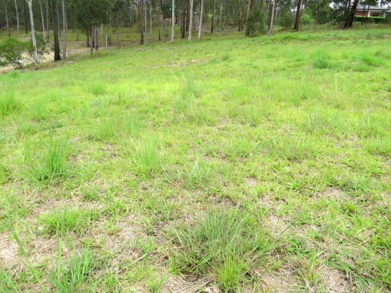 7 Woodland Avenue, Mount Nathan QLD 4211, Image 2