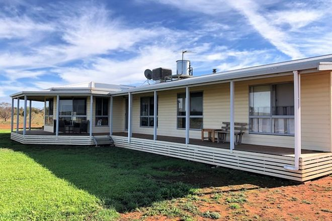 Picture of Farm 672 Dickie Road, TABBITA NSW 2652