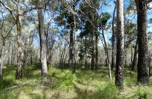 Picture of 83 Deepwater Road, Deepwater QLD 4674