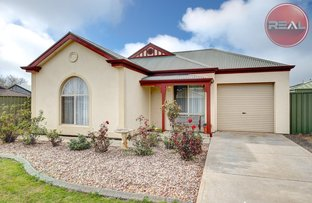 Picture of 49 Toorak Drive, Blakeview SA 5114