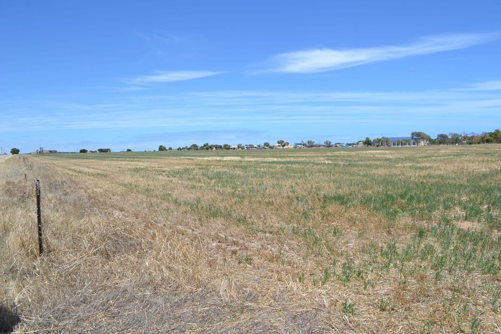 146 (Lot 22) Investigator  Road, Port Victoria SA 5573, Image 2