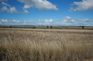 Picture of Abbotts Lane, Inverell NSW 2360