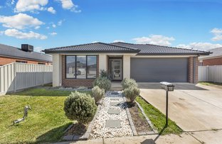 Picture of 11 Dylan Street, Epsom VIC 3551