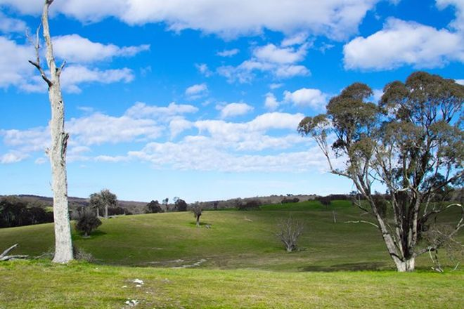 Picture of 2625 TRUNKEY ROAD, CALOOLA NSW 2795