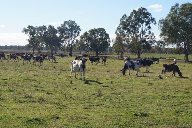 Picture of 3385 Midland Highway, STANHOPE VIC 3623