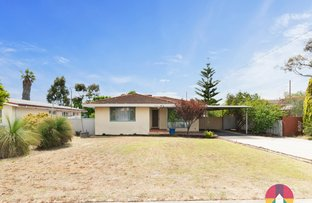 Picture of 21 Slindon Street, Nollamara WA 6061