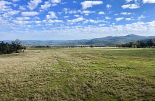 """Picture of """" MYALL PLAINS EAST"""" Upper Maules Creek Road, Narrabri NSW 2390"""