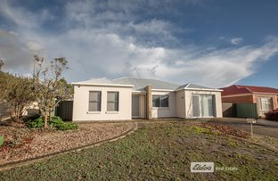 Picture of 3 ACACIA COURT, Naracoorte SA 5271
