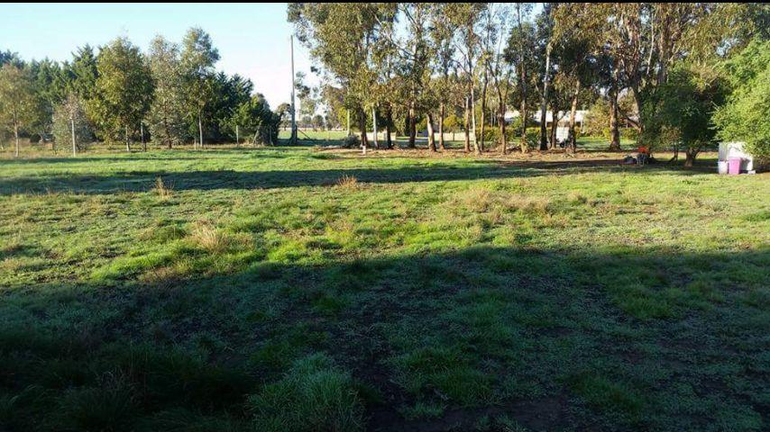 57 Honniball Drive, Tocumwal NSW 2714, Image 2