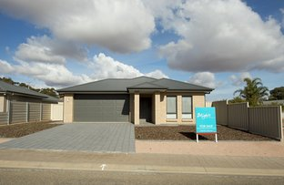 Picture of 3 Cunningham Boulevard, Port Pirie SA 5540