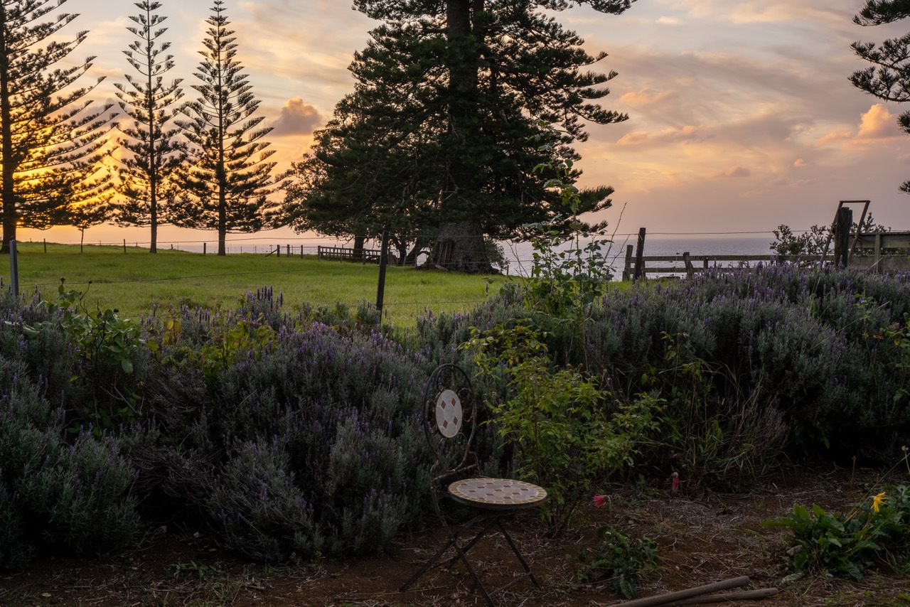 414 Anson Bay Road, Norfolk Island NSW 2899, Image 2