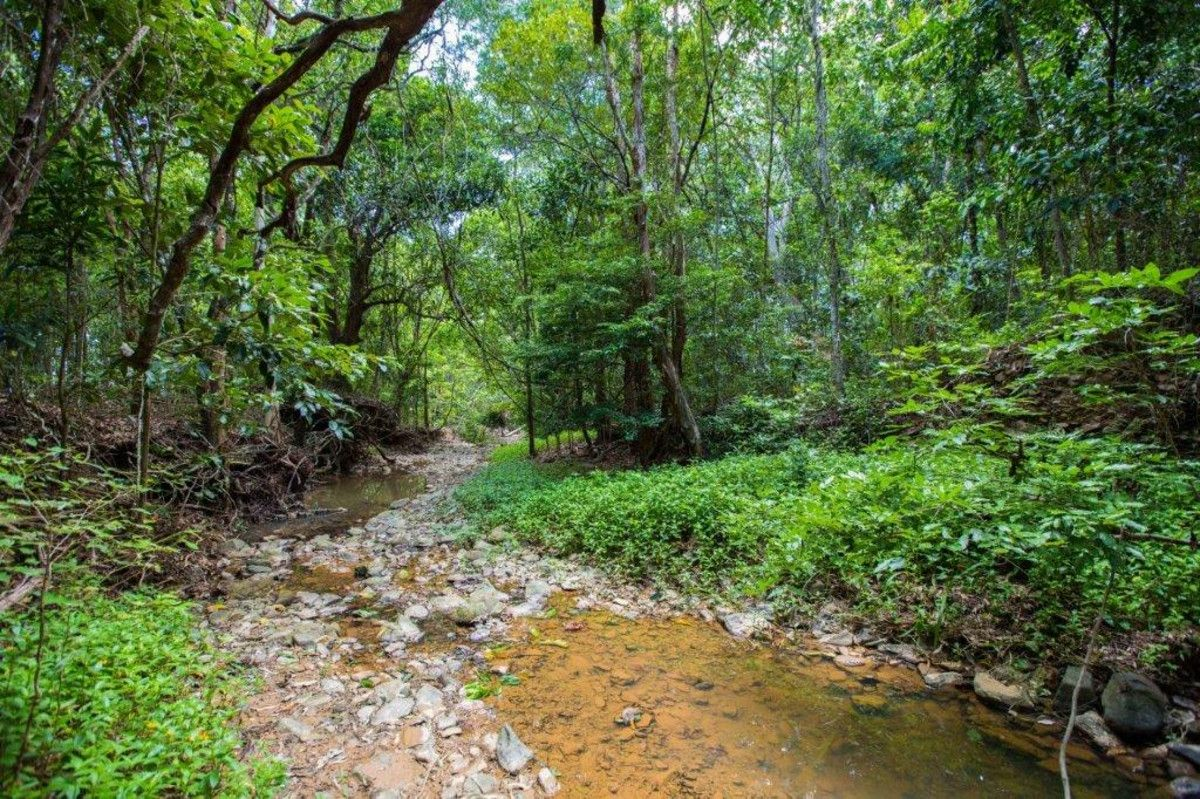 Lot 33 Mooreland Place, Kewarra Beach QLD 4879, Image 2
