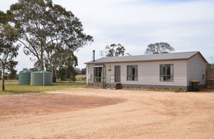 Picture of 146 Old Glenorchy Road, Deep Lead, Stawell VIC 3380