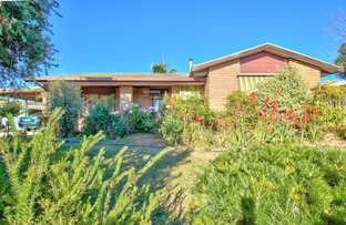 Picture of 27 Brooks Ave, Barooga NSW 3644