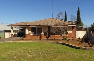 Picture of 53 Jarrah Road, Manjimup WA 6258