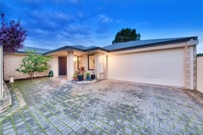 Picture of 16B Helmsley Street, SCARBOROUGH WA 6019