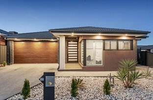 Picture of 17 Lemon Myrtle Way, Craigieburn VIC 3064
