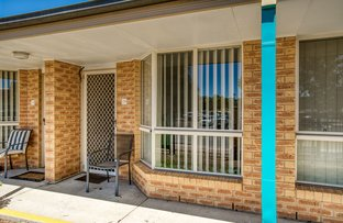 Picture of 19/7 Severin Court, Thurgoona NSW 2640