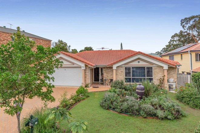 Picture of 3 Carides Place, MCDOWALL QLD 4053