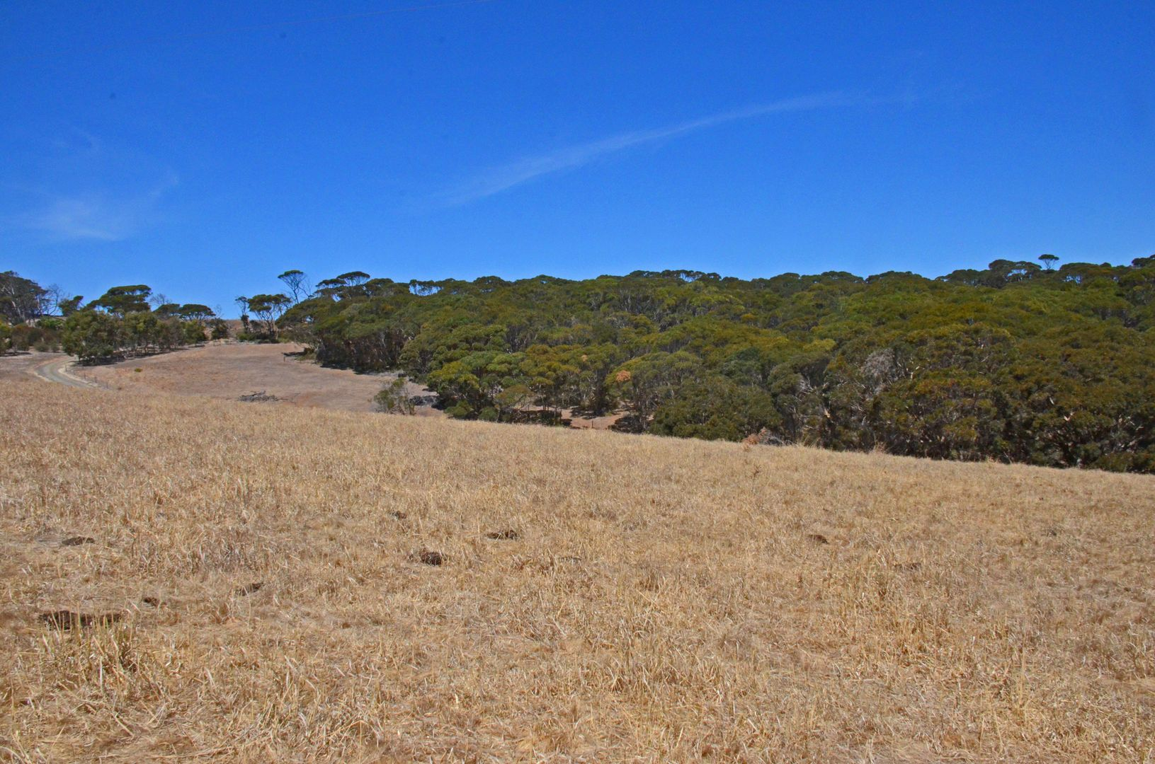 Lot 10 Cape Willoughby Road, Penneshaw SA 5222, Image 1