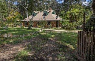 Picture of 807 Kalang Road, Bellingen NSW 2454
