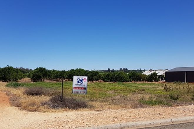 Picture of Lot 100 Mary Starr Drive, WAIKERIE SA 5330