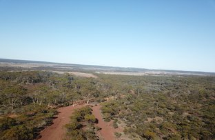 Picture of Lot 8 Carlingup Road, Ravensthorpe WA 6346