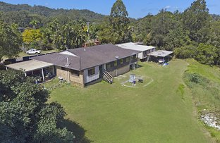 Picture of 51 Spalls Road, Diddillibah QLD 4559