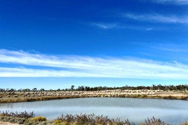 Picture of Roxburgh, WALGETT NSW 2832