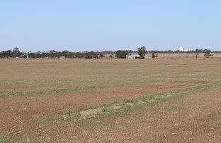 Picture of 10251 Mallee Highway, Lameroo SA 5302