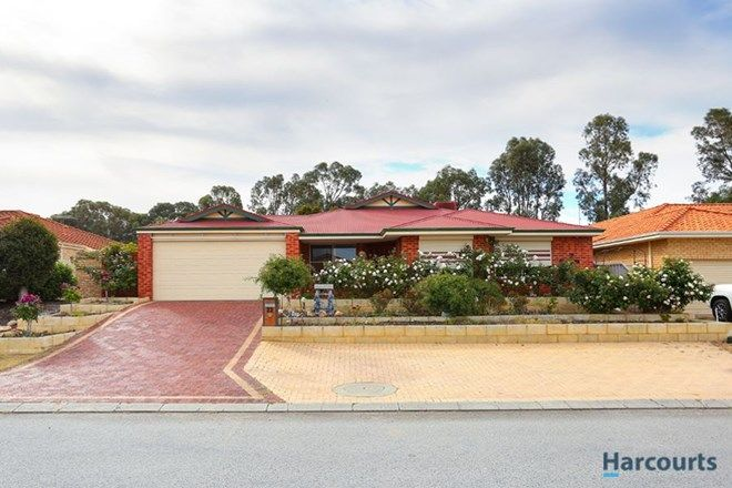 Picture of 22 Jubaea Court, CANNING VALE WA 6155
