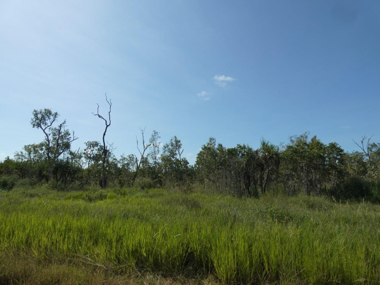 500 Heathers Lagoon Road, Lake Bennett NT 0822, Image 2
