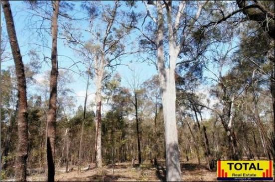 LOT 33 Cabbage Gum, Millmerran QLD 4357, Image 2