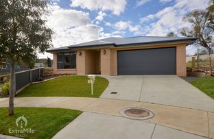 Picture of 12 Orkney Court, Ballarat North VIC 3350
