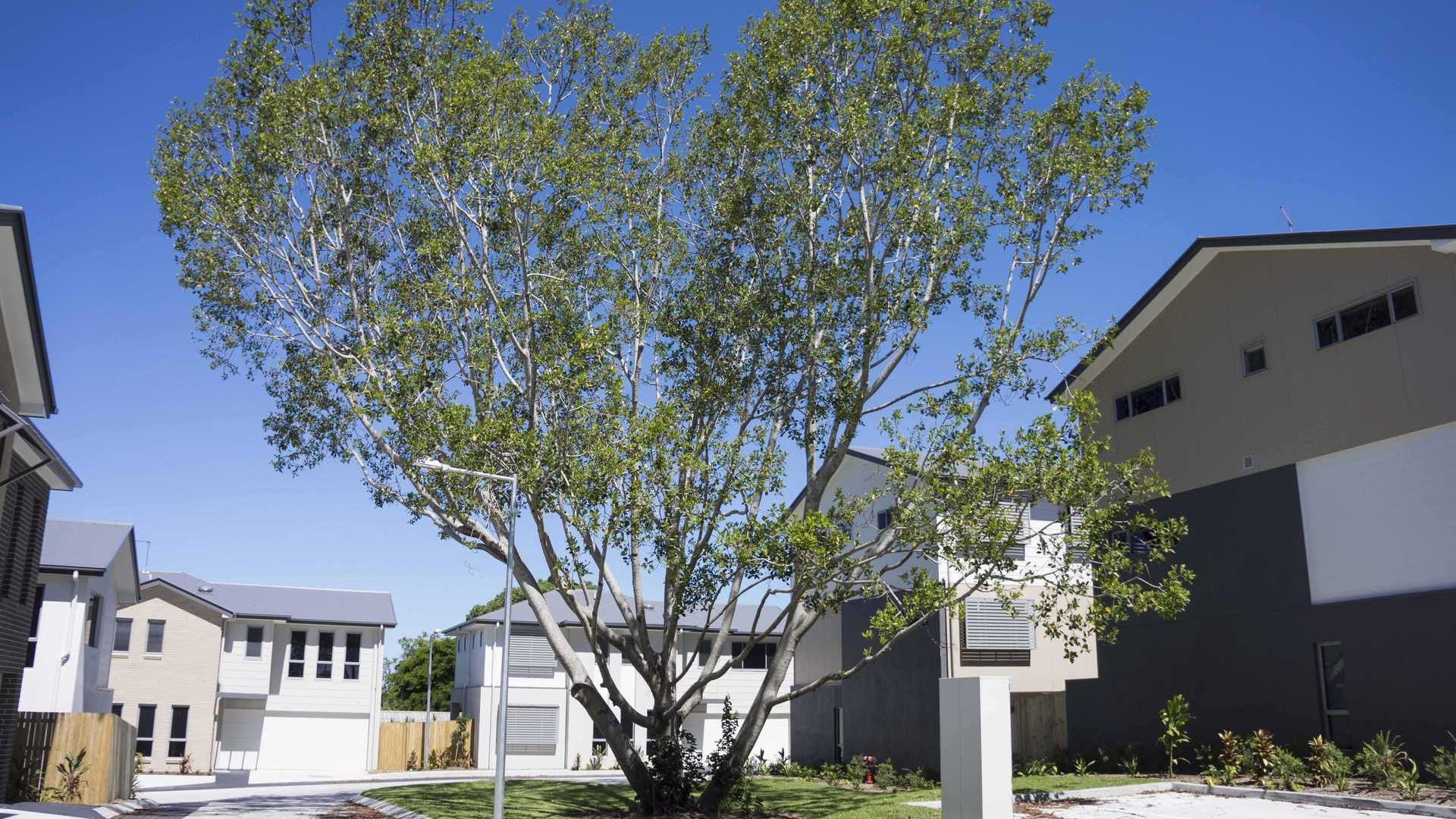23/248 Padstow Rd, Eight Mile Plains QLD 4113, Image 2