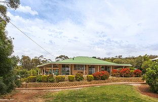 Picture of 107 Herbert Road, York WA 6302