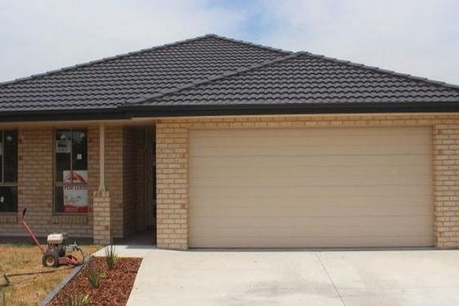 Picture of 3 Colombard Street, CLIFTLEIGH NSW 2321