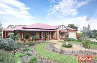 Picture of 588 Rosedale Road, Rosedale SA 5350