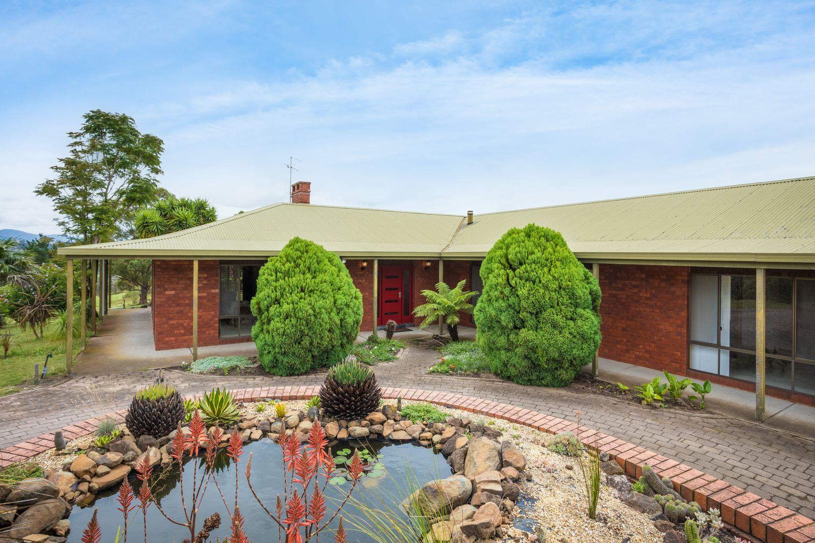 74 Finucanes Lane, Bega NSW 2550, Image 2