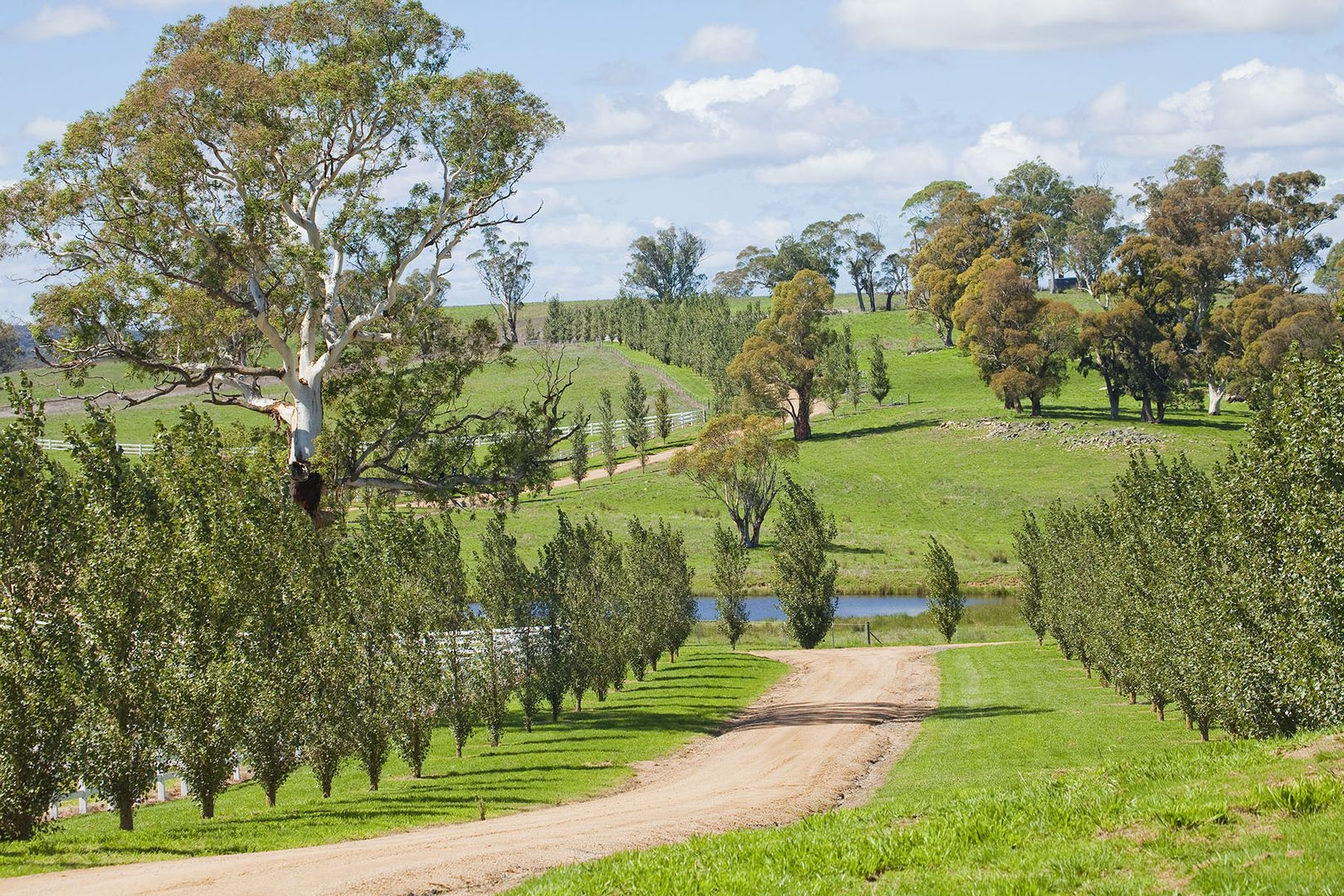 3366 Middle Arm  Road, Crookwell NSW 2583, Image 1