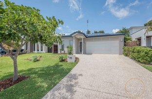 Picture of 31 Myrtle Place, Brightwater, Mountain Creek QLD 4557