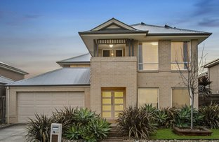 Picture of 20 Casandra Court, Berwick VIC 3806