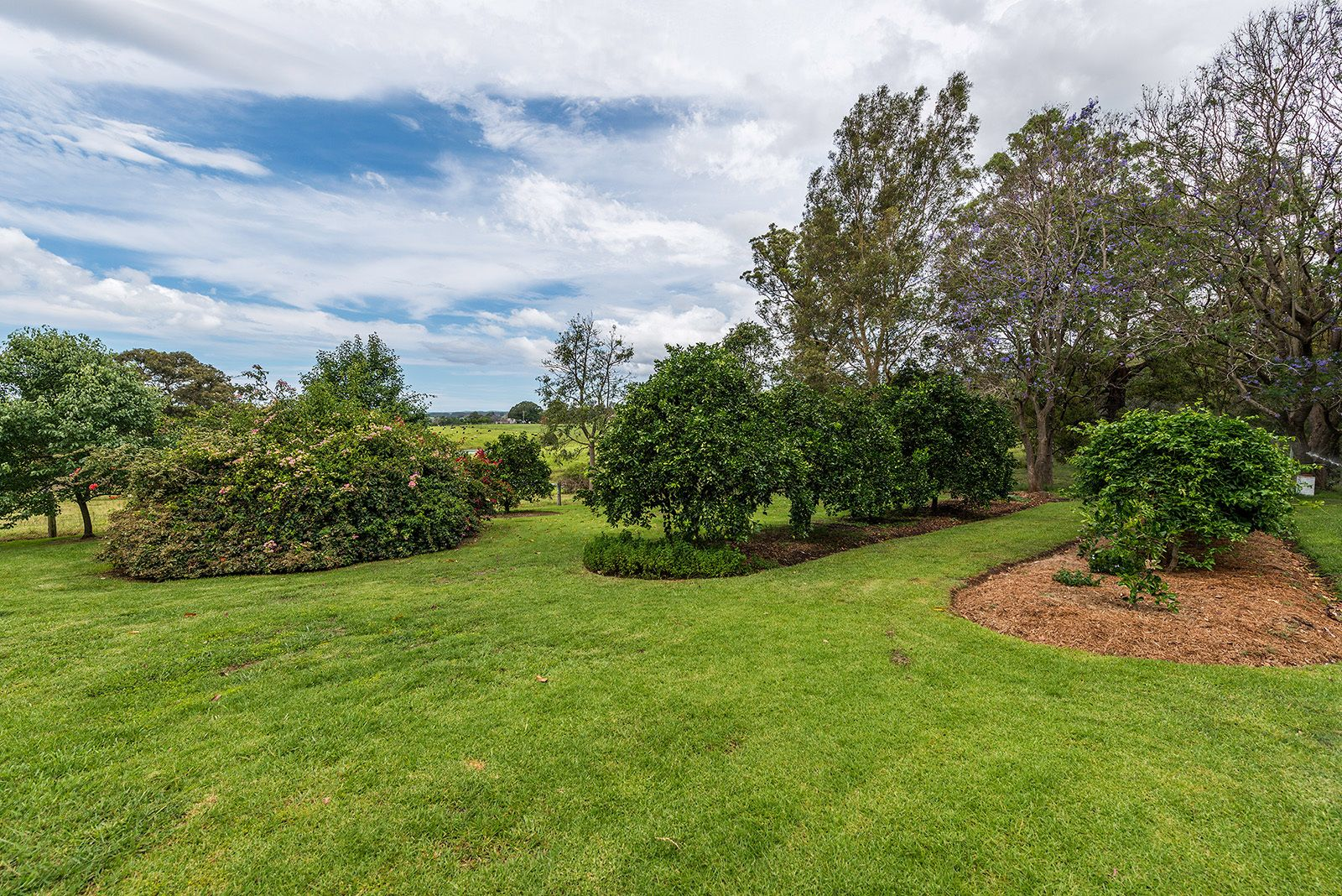 Lot 50 The Bight Road, Wingham NSW 2429, Image 0