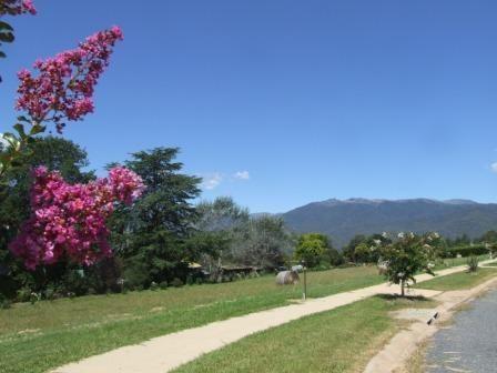 Fiddleback Drive, Tawonga South VIC 3698, Image 0