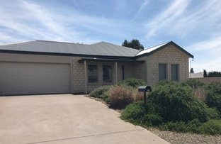 Picture of 16 Settlers Grove, Tanunda SA 5352