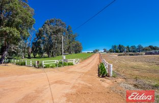Picture of 343 Steere Street, Collie WA 6225
