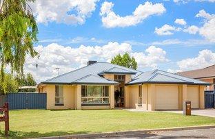 Picture of 20 Tallowwood Drive, Gunnedah NSW 2380