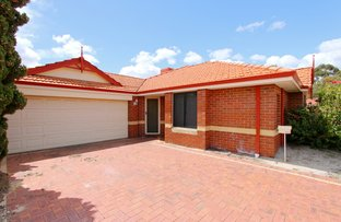 Picture of 14 Willow Tree Drive, Kewdale WA 6105