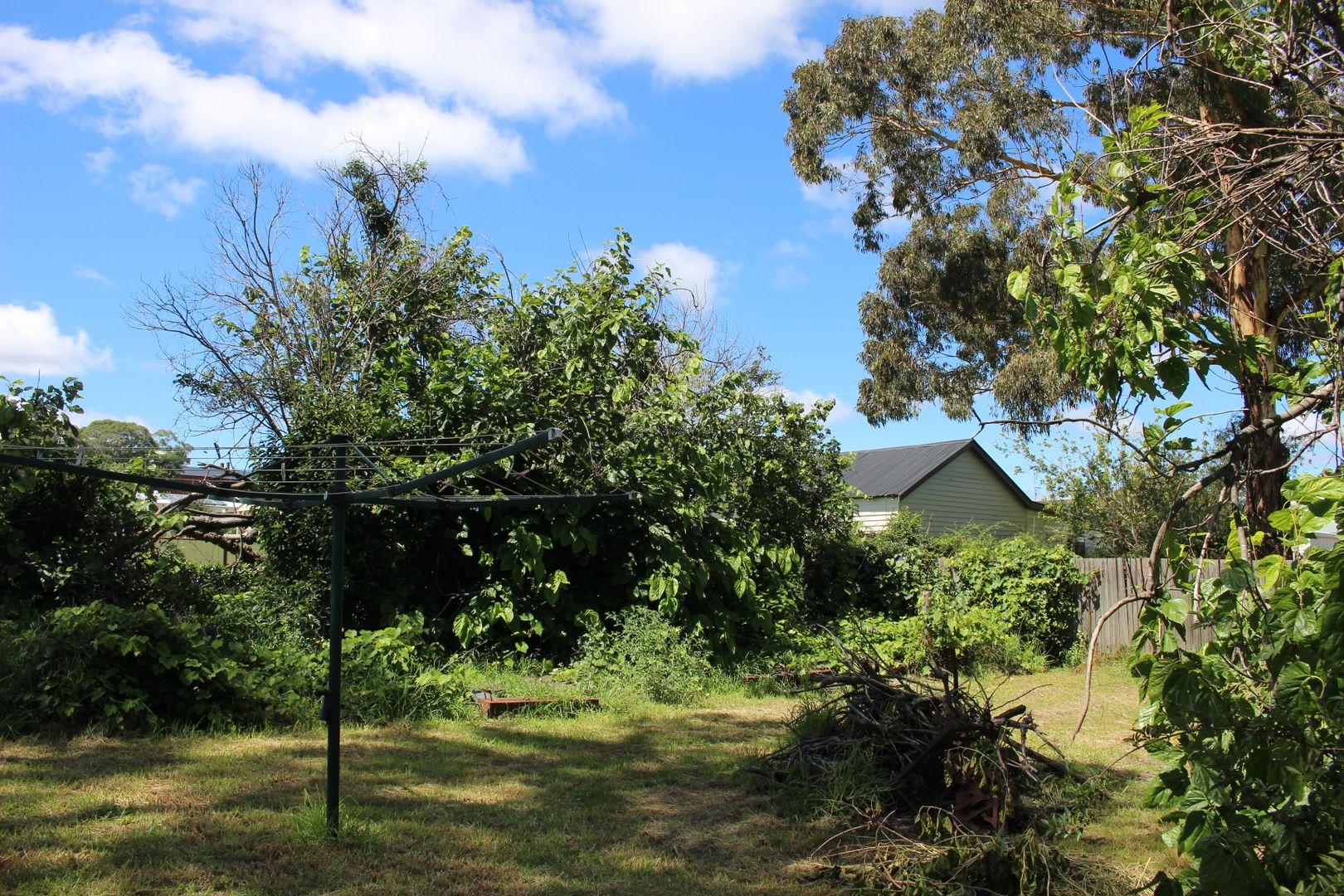 93 Scott Street, Tenterfield NSW 2372, Image 2