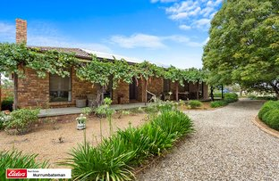 Picture of 668 Back Creek Road, Gundaroo NSW 2620